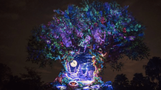 8 Favorite Holiday Experiences at Disney's Animal Kingdom